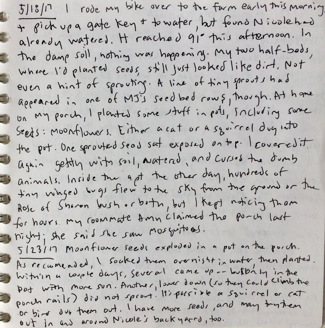garden notes 3